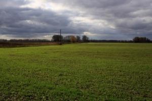 В Херсонской области прокуратура и суд вернули государству 120 га земли