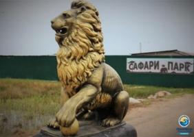 На Херсонщине приютили изможденных и трамированных животных с Донбасса