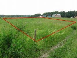 На Николаевщине мэр Баштанки незаконно передал земельный участок своему сыну