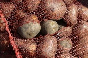 Херсонские пограничники не пустили в Крым 44 тонны картофеля