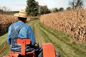 Херсонских аграриев будут учить защищать свои трудовые права