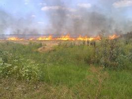 На Николаевщине второй раз за день произошел масштабный пожар