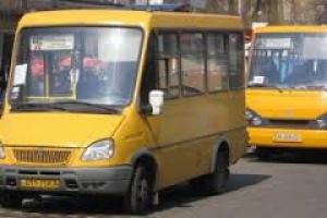 Львиную долю маршрутов в Николаеве будут обслуживать компании-перевозчики «ПИК», «МИС» и «Приватавтолюкс»