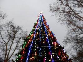 В Николаеве монтируют главную городскую елку