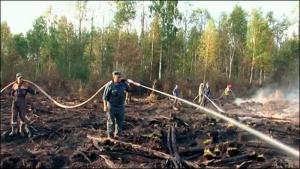 Глава Херсонской ОГА ликвидировал оперативный штаб по борьбе с лесными пожарами