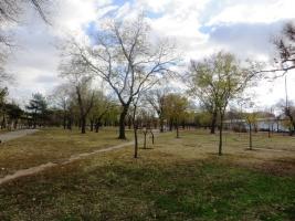 За уборку парков и скверов в Центральном районе Николаева скандальному ЧП «Эвако» отдадут почти полмиллиона гривен