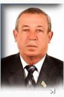 Фирма бывшего «регионала» присмотрит за зелеными насаждениями в Николаеве за 3,9 миллионов гривен