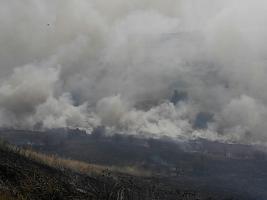 Недалеко от Коблево ликвидируют пожар, охвативший территорию в 40 га