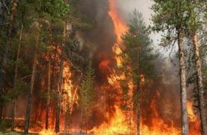 На выходных в Николаеве ожидается чрезвычайная пожарная опасность