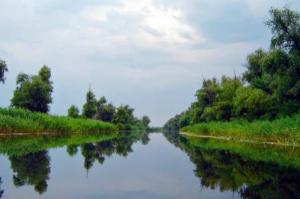 Херсонские ученые просят сохранить уникальный природный комплекс