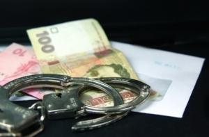 Суд отправил под стражу пойманного на взятке работника николаевского лесхоза без права залога