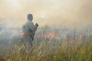 Масштабный пожар в мкр. Кульбакино Николаева: в тушении огня задействованы 3 спасательные части