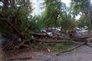 В Одесской области вследствие непогоды обесточен 21 населенный пункт