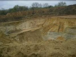 На Николаевщине оштрафовали песочного браконьера