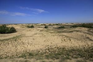 На Херсонщине национальный парк допустил растрат на миллион гривен