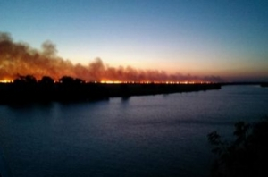 В Одесской области спасатели почти сутки тушили огонь, охвативший территорию национального парка