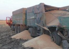 На Николаевщине мужчина погиб, пытаясь помешать движению грузового автомобиля