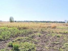 На Николаевщине работники сельсовета подделали решение сессии о приватизации земельного участка - прокуратура