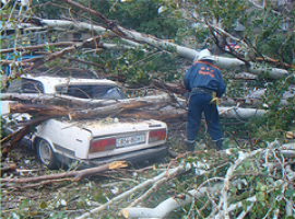 На Николаевщине непогода срывала крыши и ломала деревья