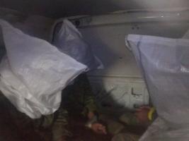 Под Широкино украинские военные взяли в плен 8 боевиков «ДНР»