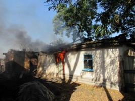 На Луганщине масштабный пожар уничтожил 22 строения и 65 га леса