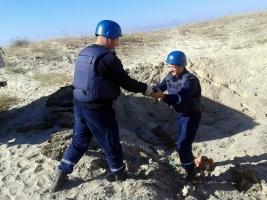 Николаевские пиротехники обезвредили около двухсот взрывоопасных предметов в районе Кинбурнского полуострова