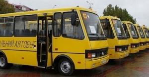 Тендер со школьными автобусами снова стал предметом скандала, теперь – в Николаевской области