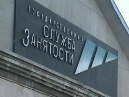Госцентр занятости, которым руководит Наталья Королевская, «пиарится» за 5 млн. грн.