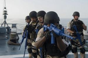 Посольство США рассказало, что будет происходить на учениях Sea Breeze в Николаевской области