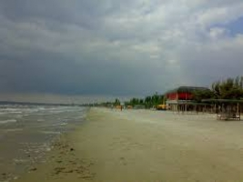 Прокуратура предъявила иск незаконному владельцу 2 гектаров земли в защитной полосе Черного моря в с. Коблево