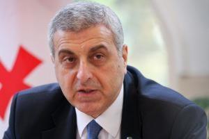 Всех грузин, занимающих высокие должности в Украине, лишат гражданства Грузии – посол
