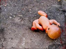 На территории спортшколы в Николаеве найдено тело новорожденного