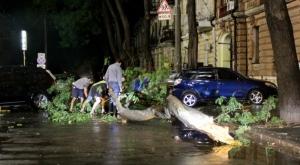 Предварительные итоги урагана, пролетевшего через Одессу