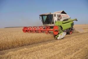 В Херсонской области уборку зерновых начнут раньше срока