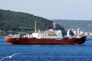 Турецкая компания просит херсонский суд арестовать российское судно за долги