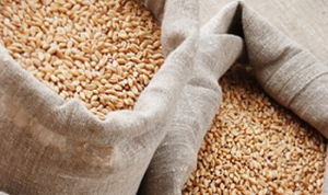 На Одесской таможне задержали зерно, оформленное на покойника