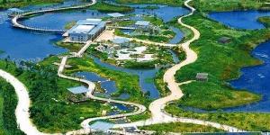 Экологи разыскивают проектировщиков для создания ветланд-парка в Одессе