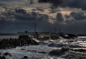 В Херсонской области стихия уничтожила сельхозпродукцию на огромную сумму