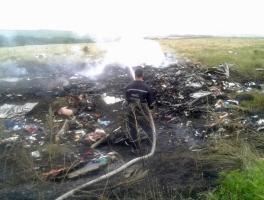 Первые фотографии упавшего в Донецкой области авиалайнера
