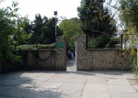 В Херсоне без полива погибает ботанический сад