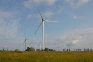 В Николаевской области началось строительство ветряного парка