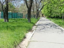 Власти Херсона игнорируют объект в городском парке, опасный для жизни и здоровья горожан