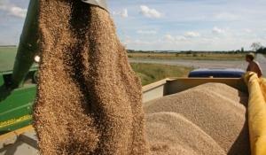 Украина побила рекорд по экспорту зерна - Клименко
