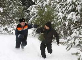 Милиция Херсонщины объявила сезон охоты на елки