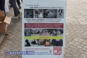 В Николаеве зоозащитники отметили Всемирный день бездомных животных