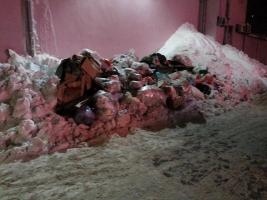 Одесская власть намерена расчистить город от мусора в ближайшие дни