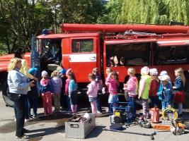 Николаевские спасатели рассказали дошкольникам, как не попасть в беду