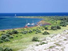 Госэкоинспекция выявила нарушения в Национальном природном парке «Джарылгачский» на Херсонщине