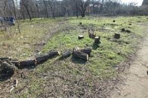В Николаеве ГАСК запретила вести незаконное строительство в микрорайоне Леваневцев