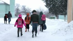 Николаевские школьники вернутся к занятиям 1 февраля